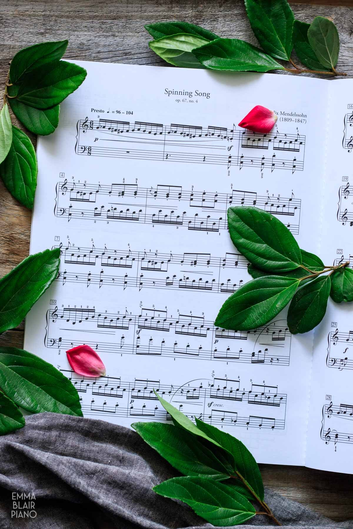 classical sheet music with green leaves and pink rose petals